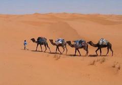 Sahara Express (itinerario di 3 giorni)